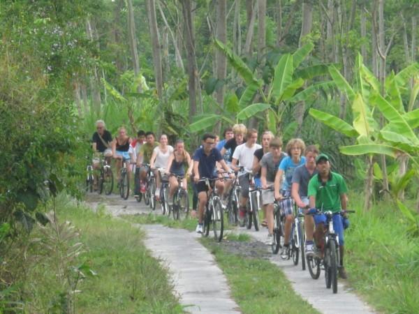 wisata sepeda di desa wisata pentingsari