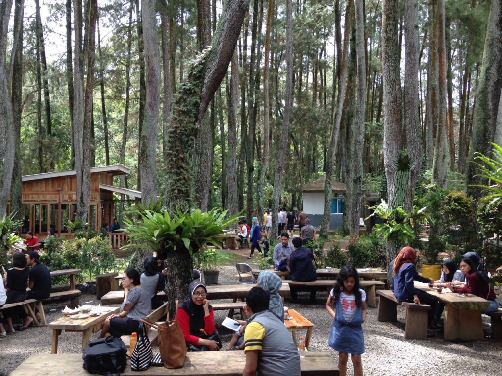 puncak becici hutan pinus mangunan