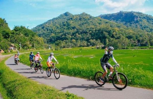 Jogja Bike Experience Petualangan Wisata Sepeda Jelajah Desa dan Persawahan